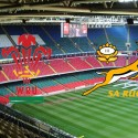 The Springboks meet Wales at the Millenium Stadium in Cardiff, Wales on 29 November 2014.