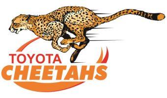 Logo Toyota Cheetahs